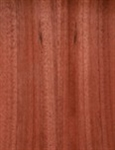 Mahogany Plywood
